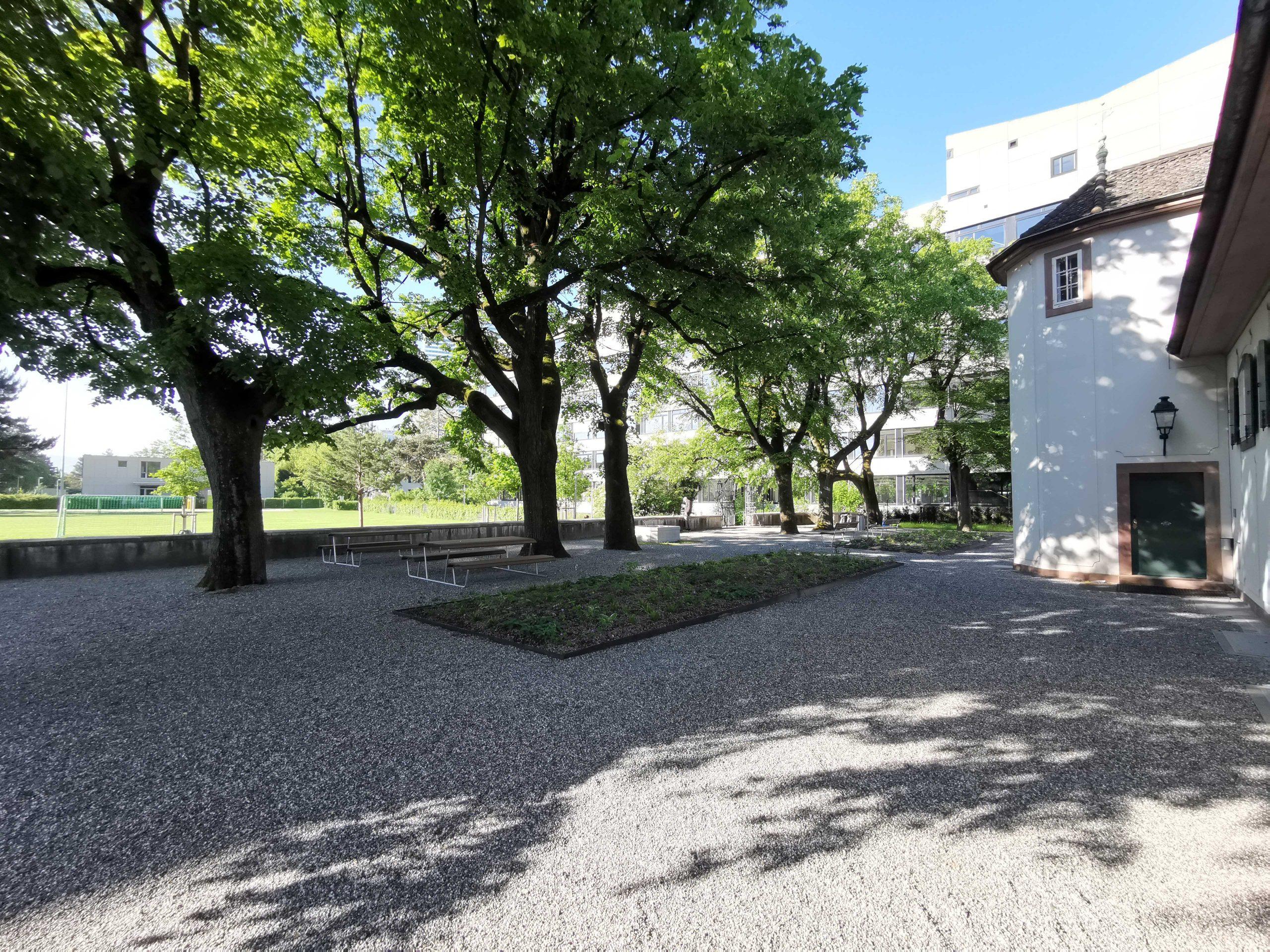Grundsanierung Garten zur Sandgrube in Basel